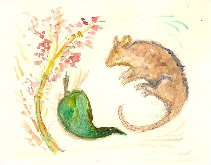 Bamboo blossom and rat